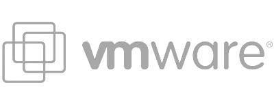 De Viske ICT vmware