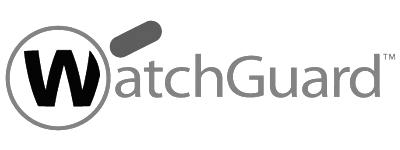 ICT De Viske Partner Watchguard